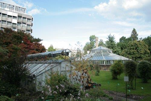Jardin botanique de l 39 universit de strasbourg - Jardin botanique de l universite de strasbourg ...