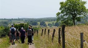 Séjour randonnée, Alsace, de beaux paysages sont à découvrir au fil de nos randonnées