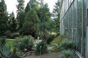 image - Der botanische Garten