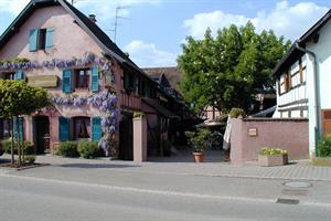 image - Restaurant Le Marronnier