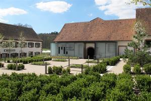 image - Musée Lalique