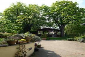image - Chambres d'hôtes en Alsace