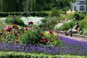 image - Giardino delle rose