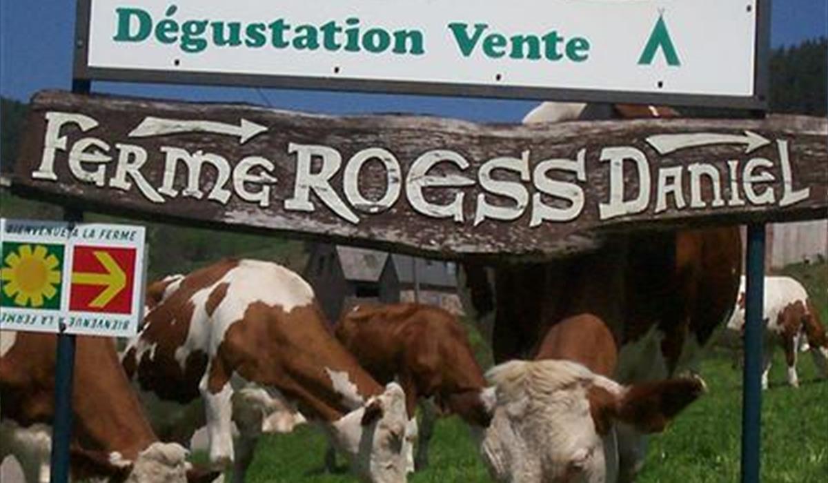 Fromagerie - Ferme Roess - Soultzeren - Vallée de Munster