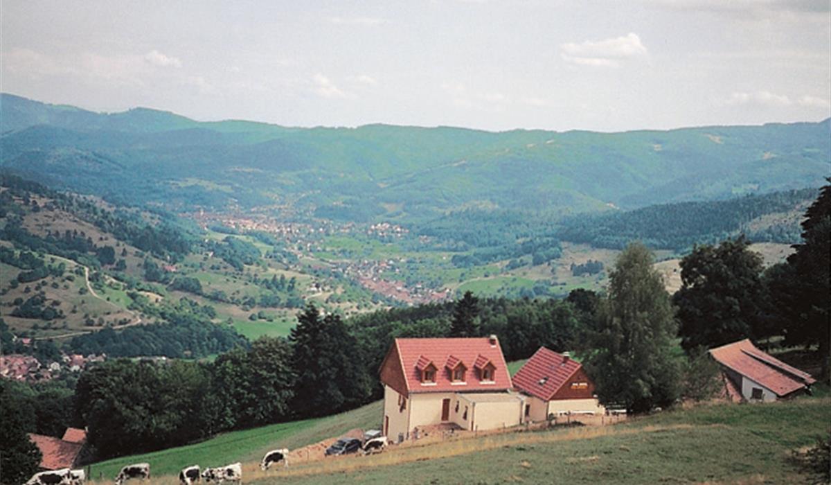 Ferme Auberge Soultzersmatt - Vallée de Munster