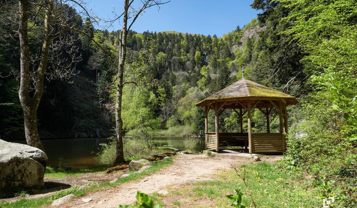 Le lac du Fischboedlé - Vallée de Munster - Alsace