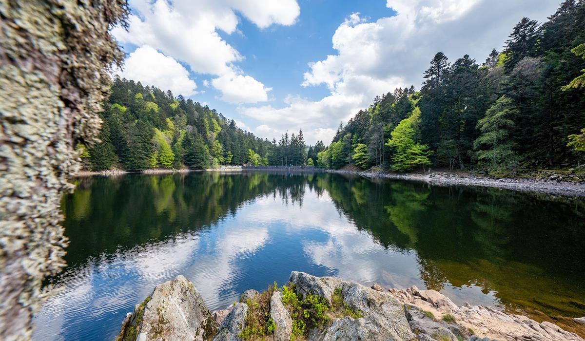 Lac de l'Altenweiher