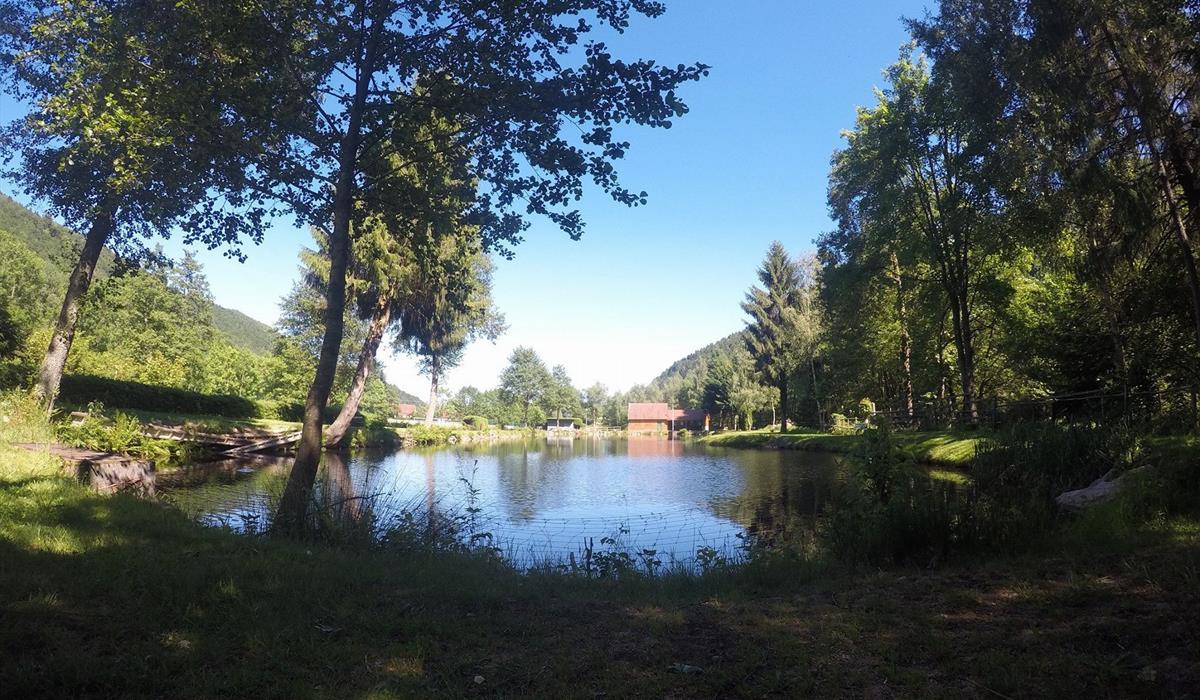 APP Stosswihr - Peche à Stosswihr dans la vallée de Munster