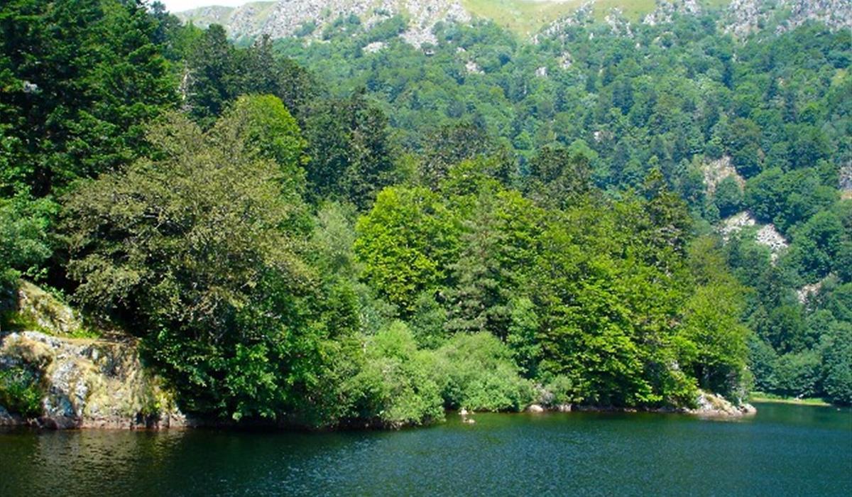 Pêche au lac du Schiessrothried - Vallée de Munster, Alsace