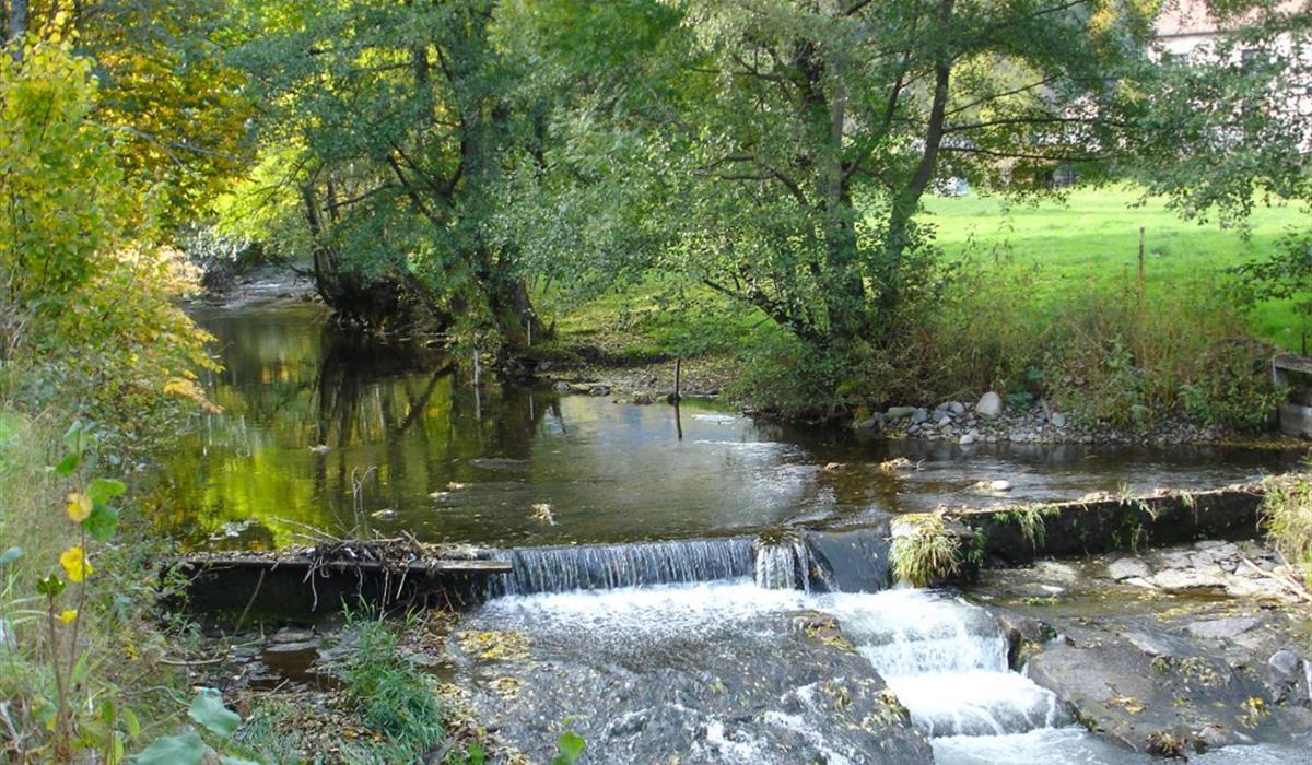Rivière la Fecht
