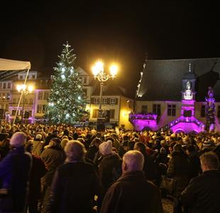 Christmas carols under the christmas tree - image