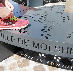 La Molshemienne, walk or run - image