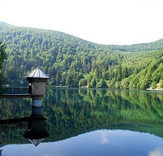 source : www.larando.org/randonnee-lac-du-ballon-avec-les-scouts-musulmans-de-mulhouse/