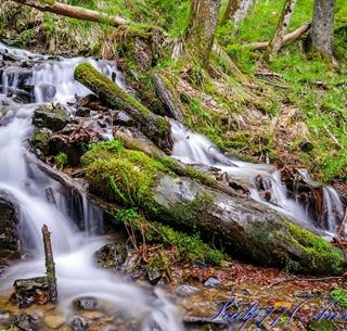 source : http://scalp77.fr/photo/picture.php?/5777-_ANS5646_lr_Cascade_de_Kletterbach
