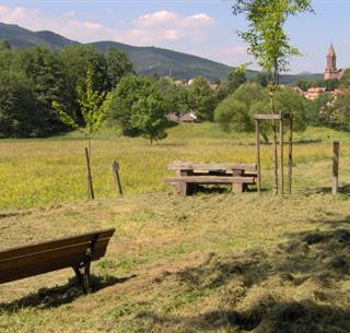 Le circuit du petit patrimoine religieux de Buhl, Crédit: T. Studer