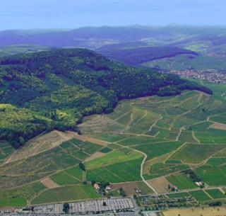 Vue d'ensemble du vignoble de Guebwiller , Crédit: Domaines Sclumberger