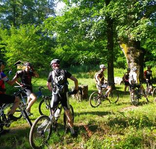 Mountainbike groupe at the Gros Chène