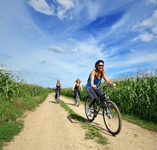 Vélo dans la plaine Crédit: Vincent Schneider