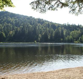 Lac du Ballon