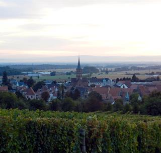 Vue sur Soultz depuis le vignoble © Vincent Schneider